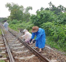 Dùng rọ đá gia cố sạt lở, thông tuyến đường sắt qua Đà Nẵng 1